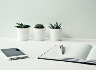 Dlaczego warto się zająć organizacją dokumentów w biurze